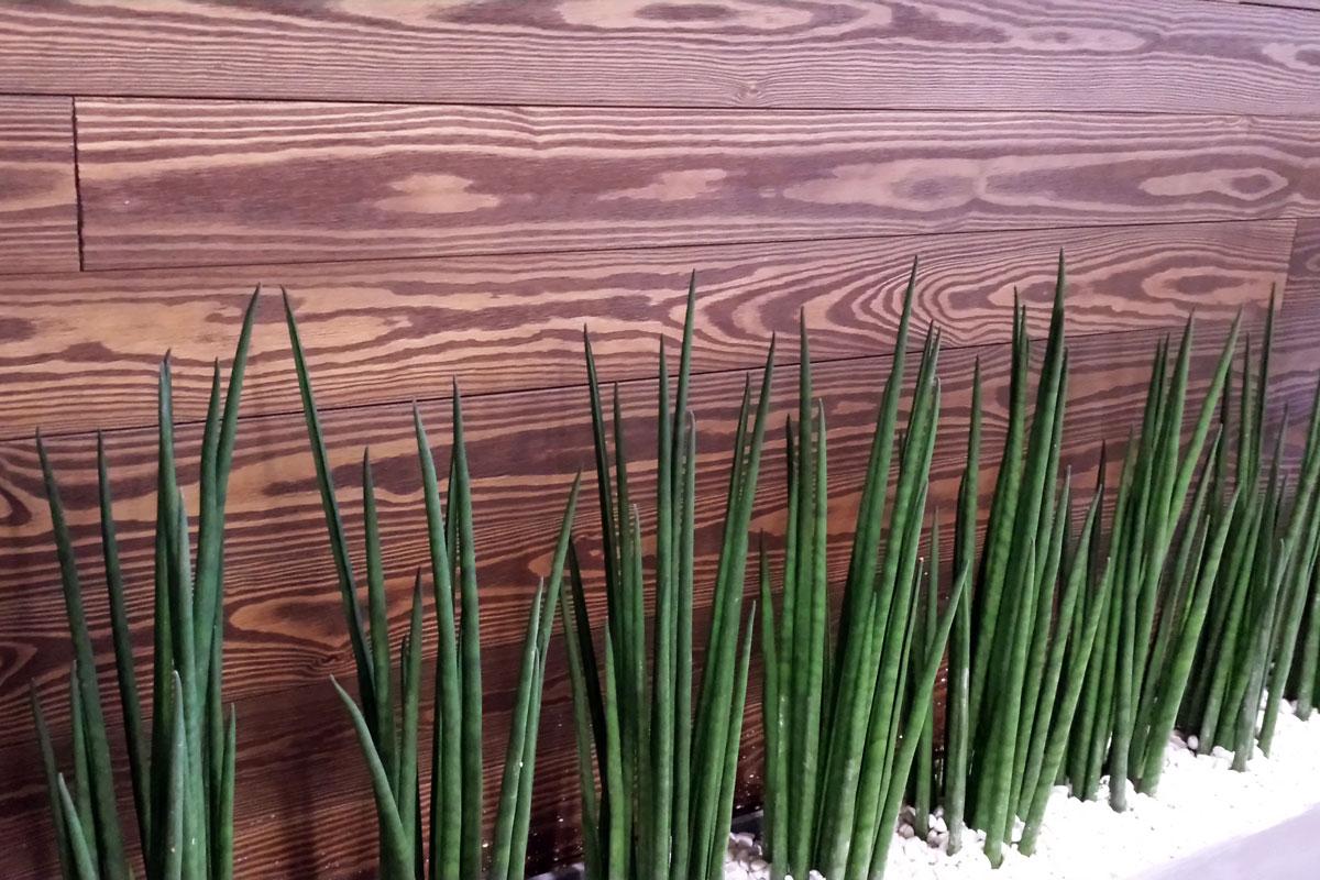 Rivestimento In Legno Parete : Rivestimenti in legno per bar ristoranti pub perlinato per pareti
